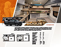 Rogue EB Flyer